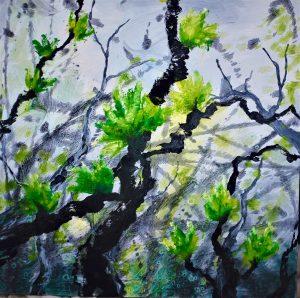 Willows - Makani
